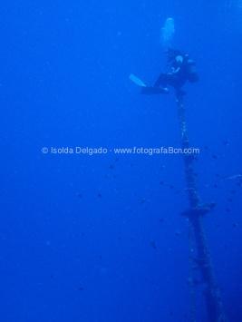 fotografias_submarina_fotosub_diving_buceo_mediterraneo_barcelona-10