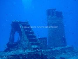 fotografias_submarina_fotosub_diving_buceo_mediterraneo_barcelona-9